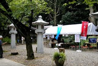 katsudo_20110815_shomei124.jpg