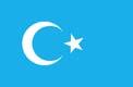 uigur_flag_image.jpg